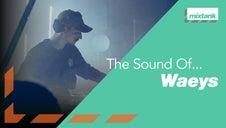 waeys drum and bass masterclass