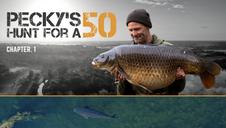 Pecky's Hunt for a 50 | Darrell Peck | Full Film