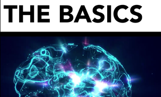 price option <p>THE BASICS</p>