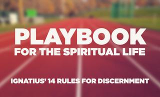"price option <p><span class=""text-left block"">PLAYBOOK FOR THE SPIRITUAL LIFE</span></p>"