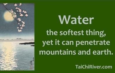 <p>15 Minutes of Tai Chi</p>
