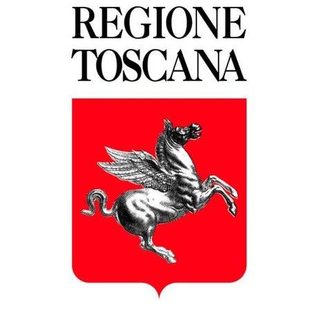 Il sostegno della Regione