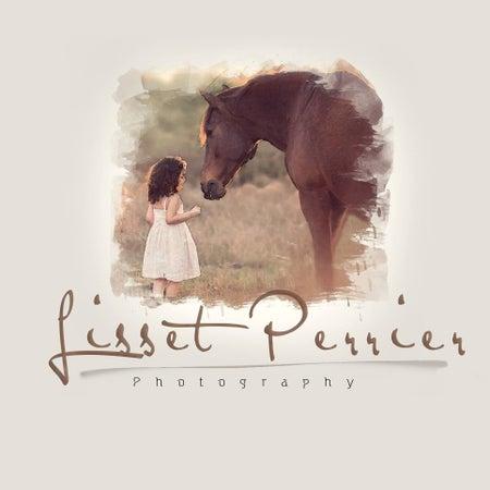 Lisset Perrier Artistry