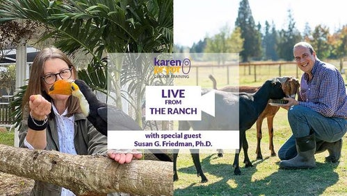 Live from The Ranch - Episode 4