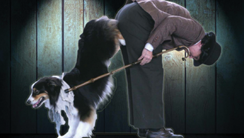 Michele Pouliot's Trick Behavior Tutorial (5-Video Collection)