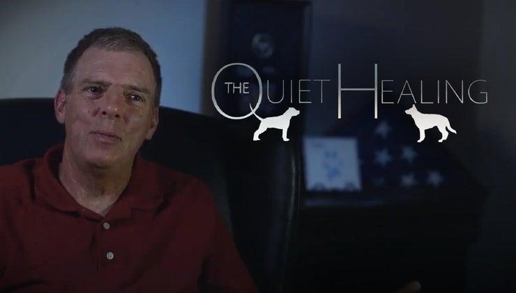 The Quiet Healing
