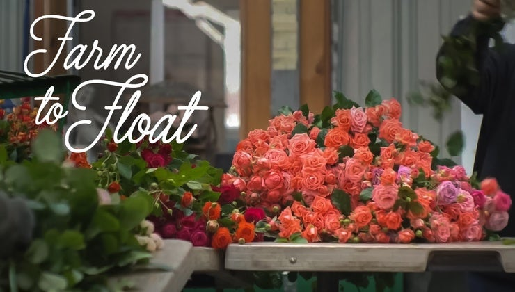 Farm To Float The Making Of California Grown Rose Parade Entries